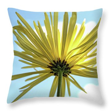 Throw Pillow featuring the photograph Sunburst by Judy Vincent