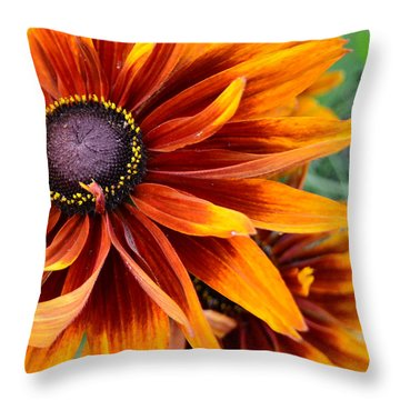 Throw Pillow featuring the photograph Sunburst by Larry Bishop
