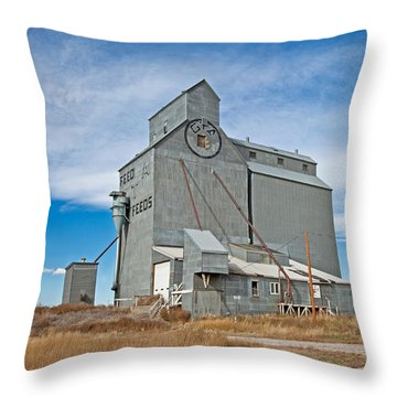 Throw Pillow featuring the photograph Sunburst Montana by Fran Riley