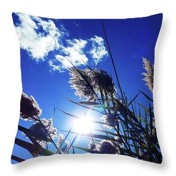 Sunburst Reeds Throw Pillow