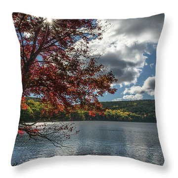 Sunburst Tree At Silvermine Lake Throw Pillow