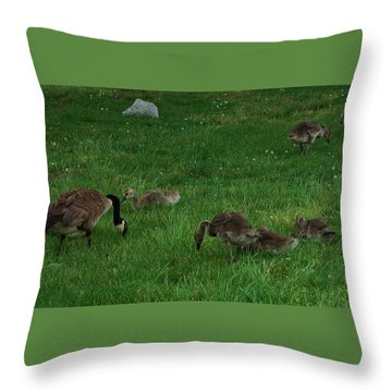 Sunday Brunch Throw Pillow
