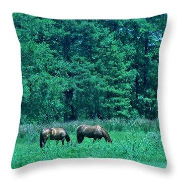 Sunday Brunch Throw Pillow by John Glass