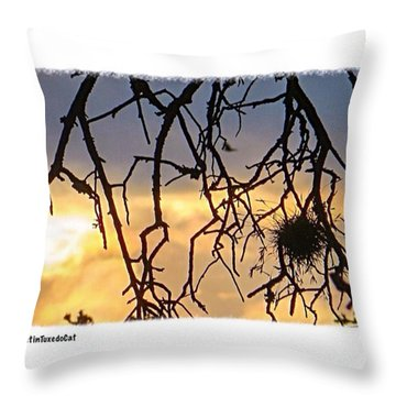 Sunday #evening #sunset #skyporn In Throw Pillow