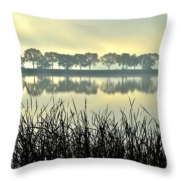 Fog At Sunrise Throw Pillow