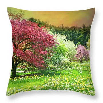 Throw Pillow featuring the photograph Sunday My Day by Diana Angstadt