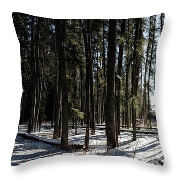 Sundial Forest Throw Pillow