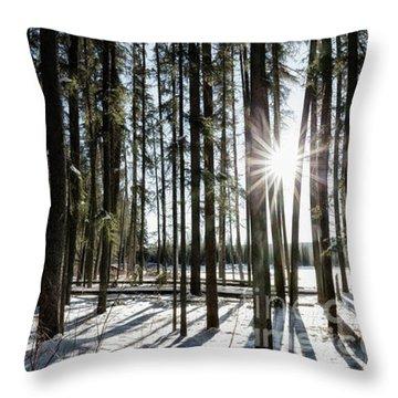 Sundial Forest Throw Pillow