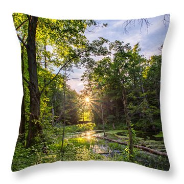Sundown At Creekside Throw Pillow