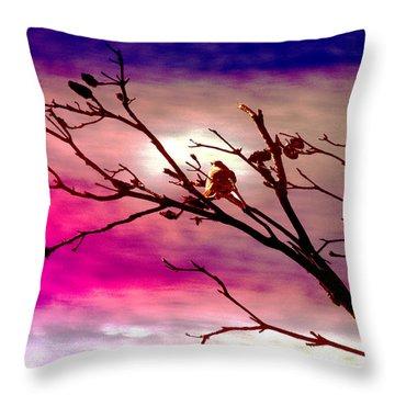 Sundown Throw Pillow by Holly Kempe