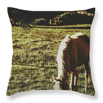 Sundown Horse Meadow Throw Pillow