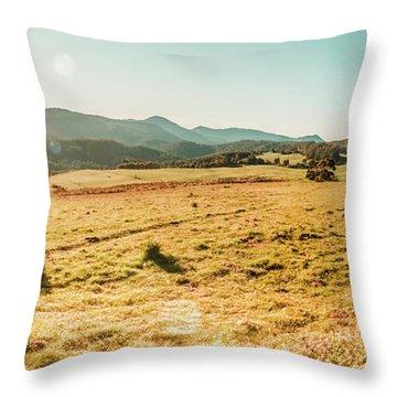 Sundown Prairie Throw Pillow
