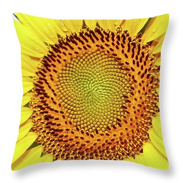 Sundrenched Bliss Throw Pillow
