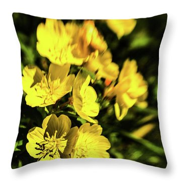 Throw Pillow featuring the photograph Sundrops by Onyonet  Photo Studios