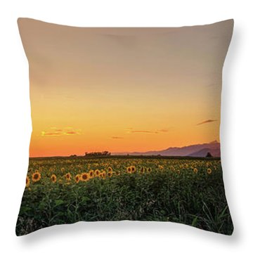 Sunfield Road Throw Pillow