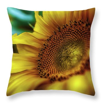 Sunflower 2006 Throw Pillow
