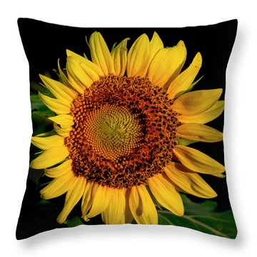 Throw Pillow featuring the photograph Sunflower 2017 12 by Buddy Scott