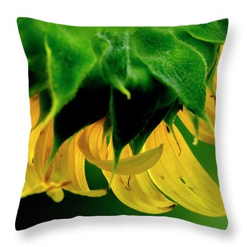Throw Pillow featuring the photograph Sunflower 2017 6 by Buddy Scott
