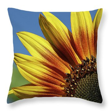 Sunflower 38 Throw Pillow