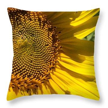 Sunflower And Bee Throw Pillow by Darice Machel McGuire