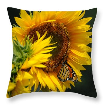 Sunflower And Monarch 3 Throw Pillow