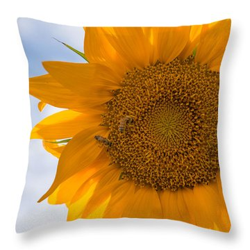Sunflower And The Bee  Throw Pillow