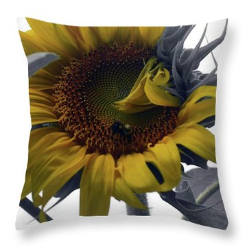 Throw Pillow featuring the photograph Sunflower Bee by Richard Ricci