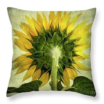 Sunflower Throw Pillow by Bernard Jaubert