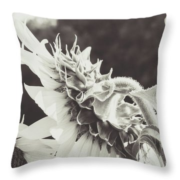 Throw Pillow featuring the photograph Sunflower Black And White by Andrea Anderegg
