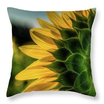 Throw Pillow featuring the photograph Sunflower Blooming Detailed by Dennis Dame