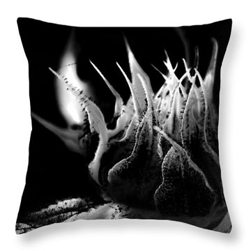 Sunflower Bud Abstract Throw Pillow