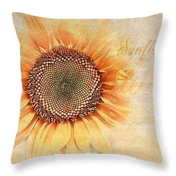 Sunflower Classification Throw Pillow