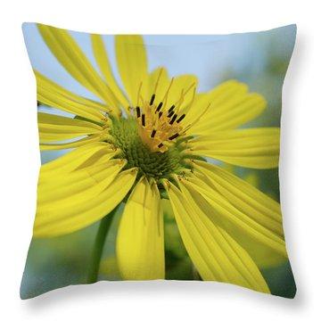 Sunflower Close-up Throw Pillow