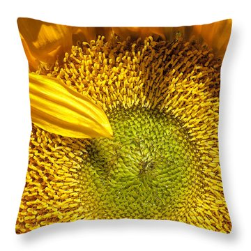 Sunflower Closeup Throw Pillow