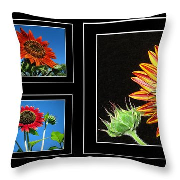 Throw Pillow featuring the photograph Sunflower Collage by Joyce Dickens