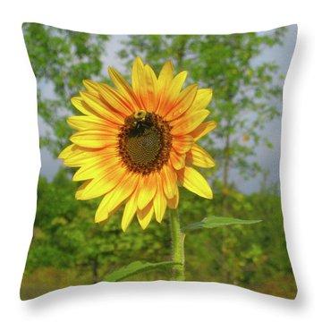 Ah, Sunflower Throw Pillow by Deborah Dendler