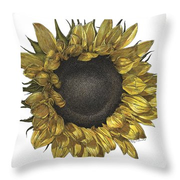 Sunflower Drawing In Color Throw Pillow