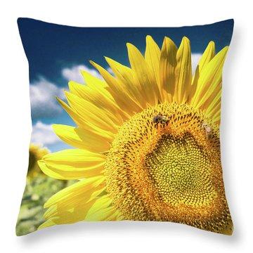 Sunflower Dreams Throw Pillow