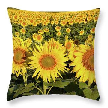 Throw Pillow featuring the photograph Sunflower Faces by Ann Bridges