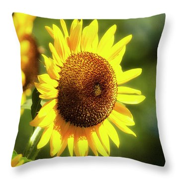 Throw Pillow featuring the photograph Sunflower Field by Christina Rollo