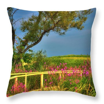 Throw Pillow featuring the photograph Sunflower Field - Colby Farm by Joann Vitali