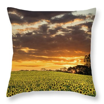 Sunflower Fields Sunset Throw Pillow