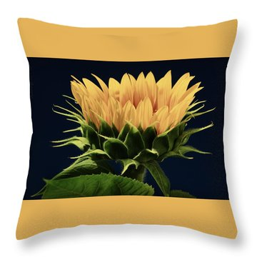 Throw Pillow featuring the photograph Sunflower Foliage And Petals by Chris Berry
