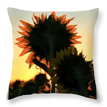 Throw Pillow featuring the photograph Sunflower Greeting  by Chris Berry