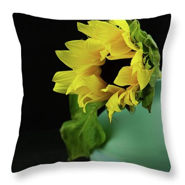 Sunflower In Blue Pottery Throw Pillow
