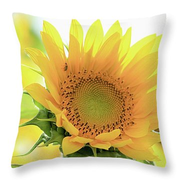 Sunflower In Golden Glow Throw Pillow