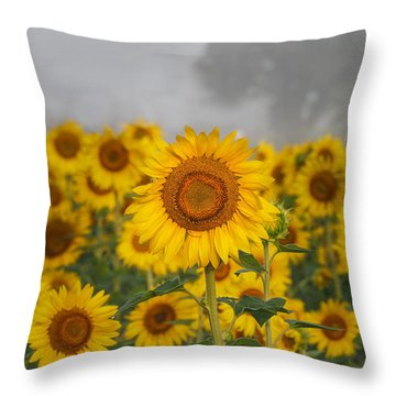 Sunflower In The Fog Throw Pillow