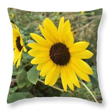 Throw Pillow featuring the photograph Sunflower by James Fannin