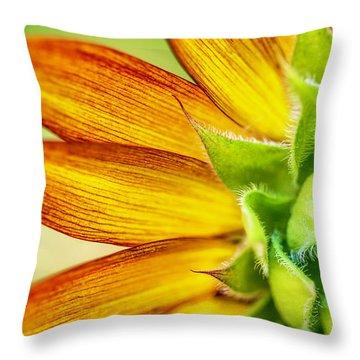 Sunflower Macro 1 Throw Pillow