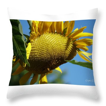 Sunflower, Mammoth With Bees Throw Pillow